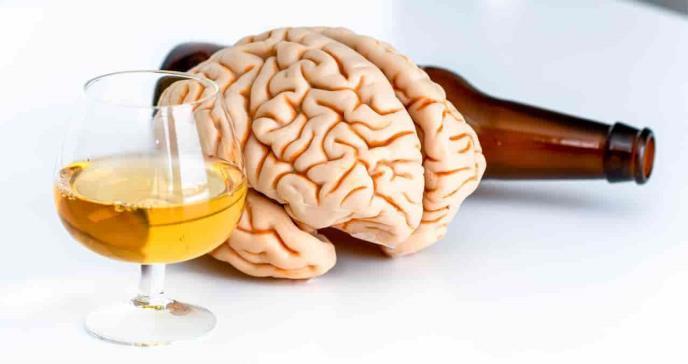Según estudio, ningún nivel de alcohol es seguro para el cerebro