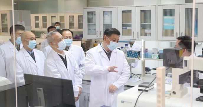 Investigadores chinos encuentran nuevos lotes de coronavirus en murciélagos