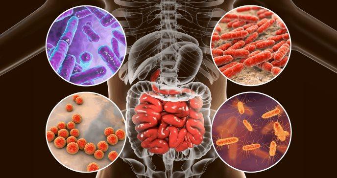 Microplásticos y sus posibles efectos nocivos en la salud humana