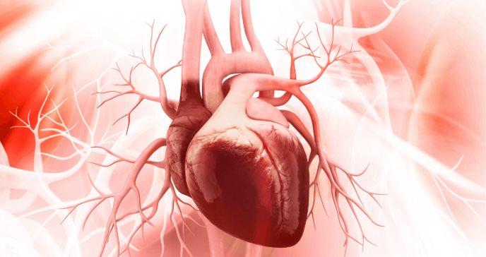 Una sustancia de la sangre permite diferenciar la miocarditis de otros problemas de corazón