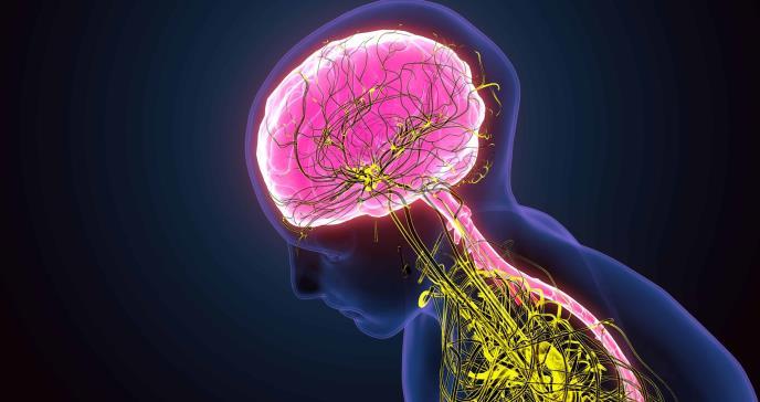 El cerebro se devora a sí mismo por la falta de sueño